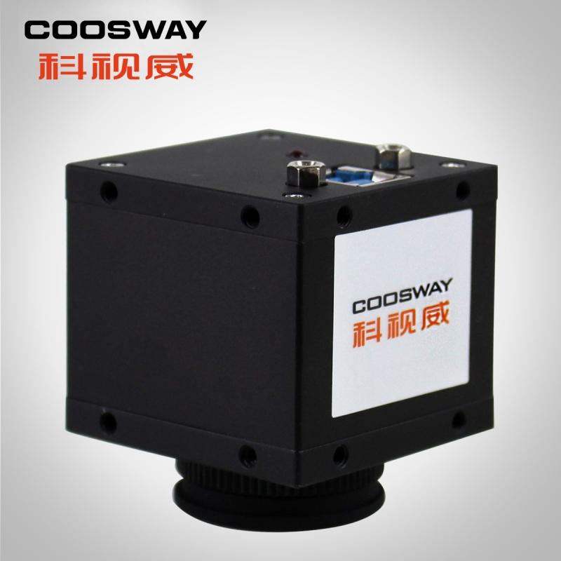 CSW-K300